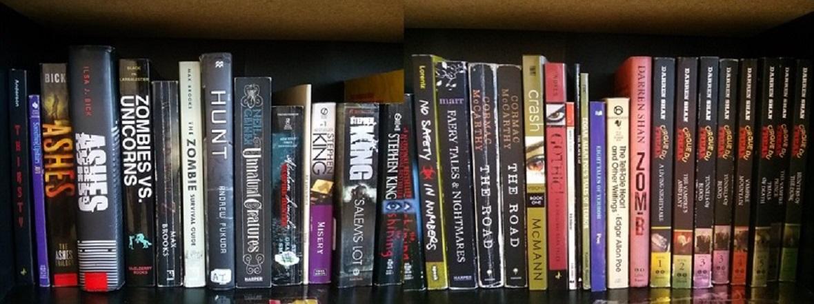 bookshelf resized